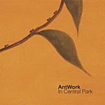 Antwork-In-Central-Park-150x150