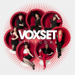 Voxset-Attitubes-150x150